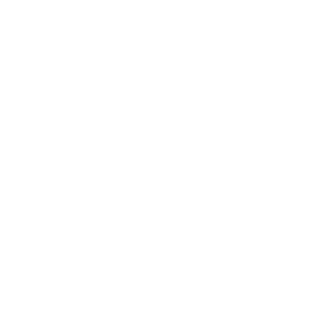 MFCoin